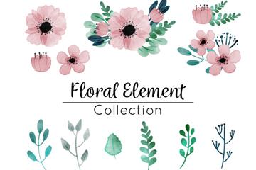 18款彩�L花卉和�淙~矢量素材