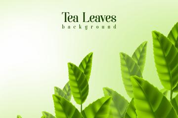 �G色新�r茶�~矢量素材