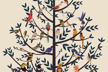 创意停满树梢的鸟类矢量素材
