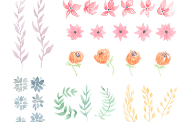29款水彩绘叶子和花卉矢量图