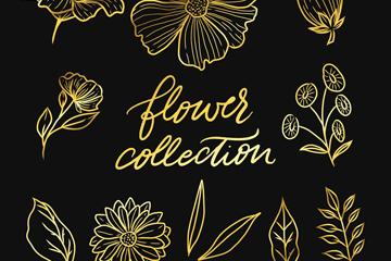 11款金色花卉和叶子矢量素材
