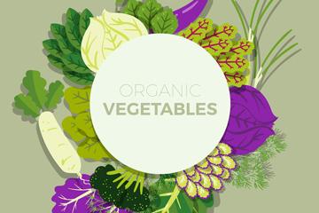 彩色有机蔬菜框架矢量素材