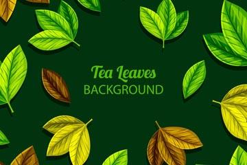 彩色茶�淙~子矢量素材