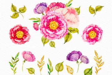 15款彩绘花卉和叶子矢量图