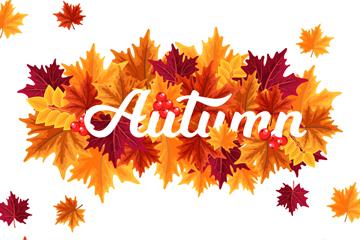 彩色秋季树叶艺术字矢量素材