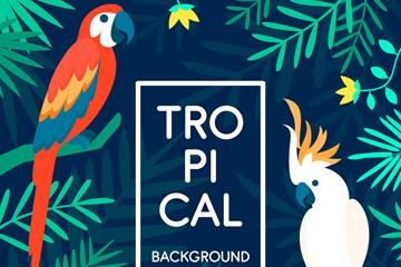 创意热带鹦鹉矢量素材