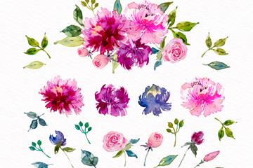 20款水彩绘美丽花草矢量素材