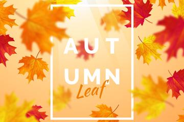 彩色秋季枫叶矢量素材