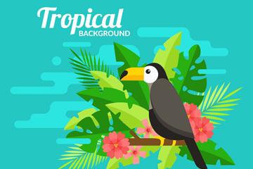 扁平化热带树叶和大嘴鸟矢量图