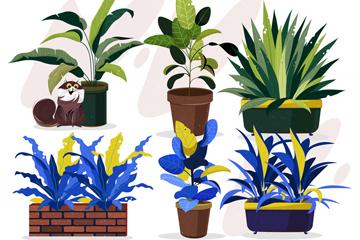 6款彩色美��植物盆栽矢量素材