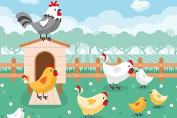 卡通养鸡场鸡群矢量素材