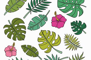 14款彩色花卉和�淙~矢量素材