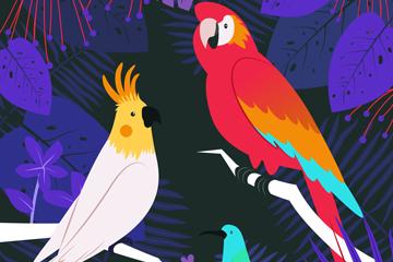 彩色热带树林鸟类矢量素材