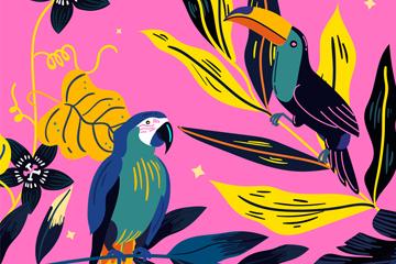 彩绘热带鹦鹉和大嘴鸟矢量图