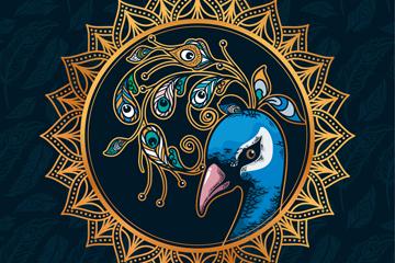 水彩绘美丽孔雀头像矢量素材