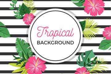 创意夏季热带花卉条纹背景矢量图
