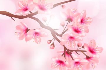 ��意�光下的粉色花枝矢量素材