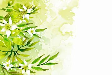 水彩�L�G色�淙~白色花卉矢量�D