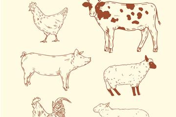 6款手绘农场动物矢量素材