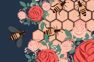 创意蜜蜂和玫瑰矢量素材