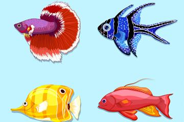 4款美丽热带鱼矢量素材