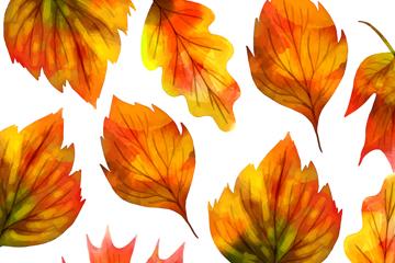 美丽秋季树叶无缝背景矢量素材