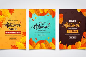 3款彩色秋季�淙~促�N卡片矢量�D