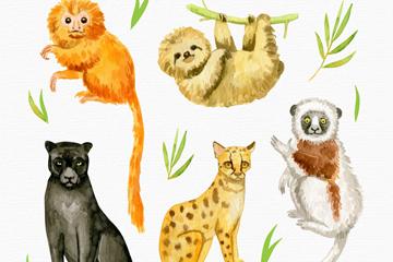 5款可爱水彩绘动物矢量素材
