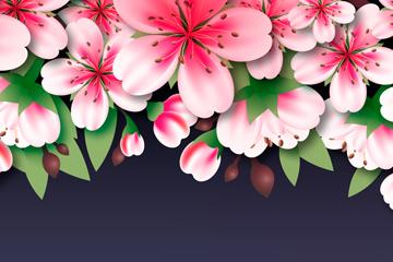 美��粉色桃花矢量素材