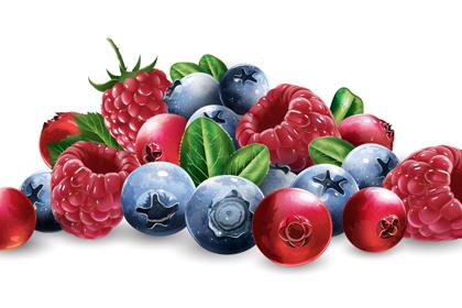新�r水果果粒矢量素材