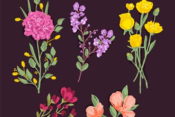5款彩色盛�_花卉矢量素材