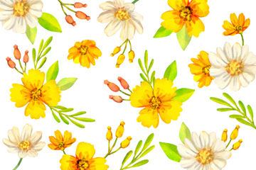 �S色花卉�o�p背景矢量素材