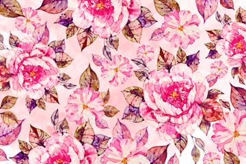 水彩�L粉色花卉�o�p背景矢量�D