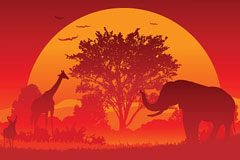 夕阳中动物的矢量素材