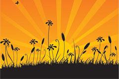 日落时的花丛剪影矢量素材