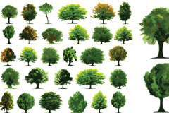 各种树木矢量素材大全