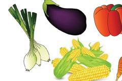多种色泽亮丽的蔬菜矢量素材下载