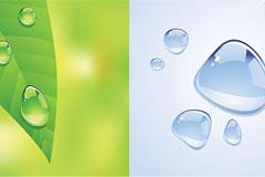 晶莹的水珠与绿叶矢量素材