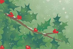 一款非常漂亮的冬青树矢量素材