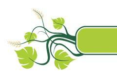 一款清新的藤蔓植物banner矢量素