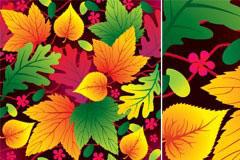 各种色彩丰富的树叶矢量素材