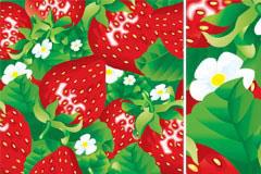 一款鲜亮的草莓背景矢量素材