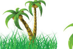 椰子树与绿色草丛矢量素材