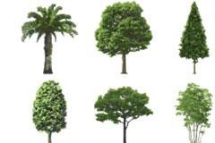 各种环保题材的树木与标志矢量素材