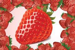 可以以假乱真的草莓矢量素材