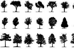 各种树木剪影矢量素材