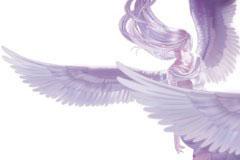 梦幻天使矢量素材