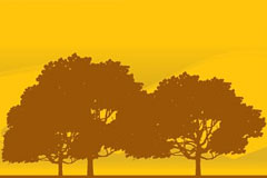 黄昏时的树木剪影矢量素材
