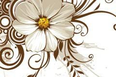 复古花纹和菊花EPS矢量素材