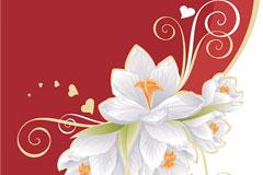 白色花朵花纹矢量素材